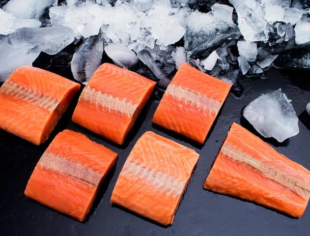 Chum Salmon-Oncorhynchus keta