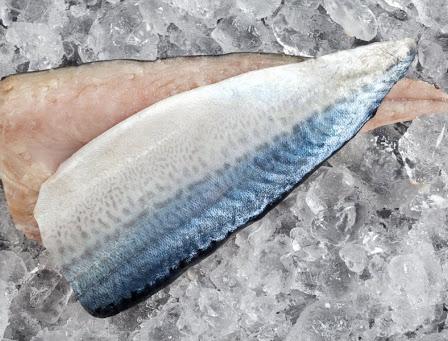 Pacific Mackerel-Scomber Japonicus